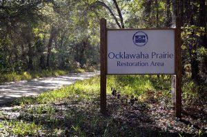 Parking at Ocklawaha Restoration Area, Marion County, Florida