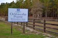 Entrance to Chernobyl Memorial Forest at Ocklawaha Prairie Restoration Area