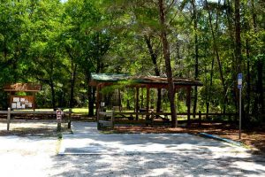 Wheelchair accessible parking and picnic area at Dunns Creek State Park near Satsuma, Florida