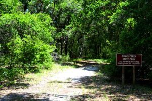 Hiking Trail at Dunns Creek State Park, Florida