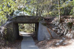 Old Trestle left from Southern Florida Railroad