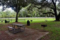 Public Picnic and Grilling at Orange Springs Park