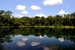Blue Pond at Dunns Creek State Park in Florida