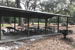 Bivens Arm Nature Park offers this picnic area in Gainesville, Alachua County