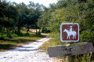 Horse trail at Dunn's Creek State Park