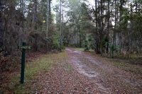 Coyner Road: seen here, use of abandoned roads make for wide and clear hiking trails