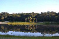 Indian Lake near Ocala, Florida is a large, aquifer-fed sinkhole