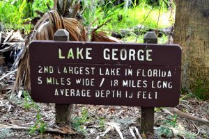 Some facts on Lake George, the second largest lake in Florida