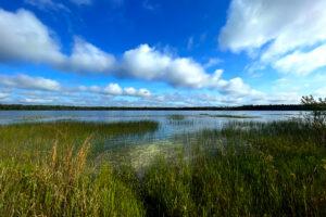 Magnolia Lake at Camp Blanding Loop