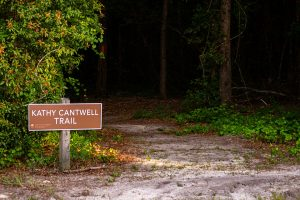 Kathy Cantwell Trail at Little Orange Creek Reserve