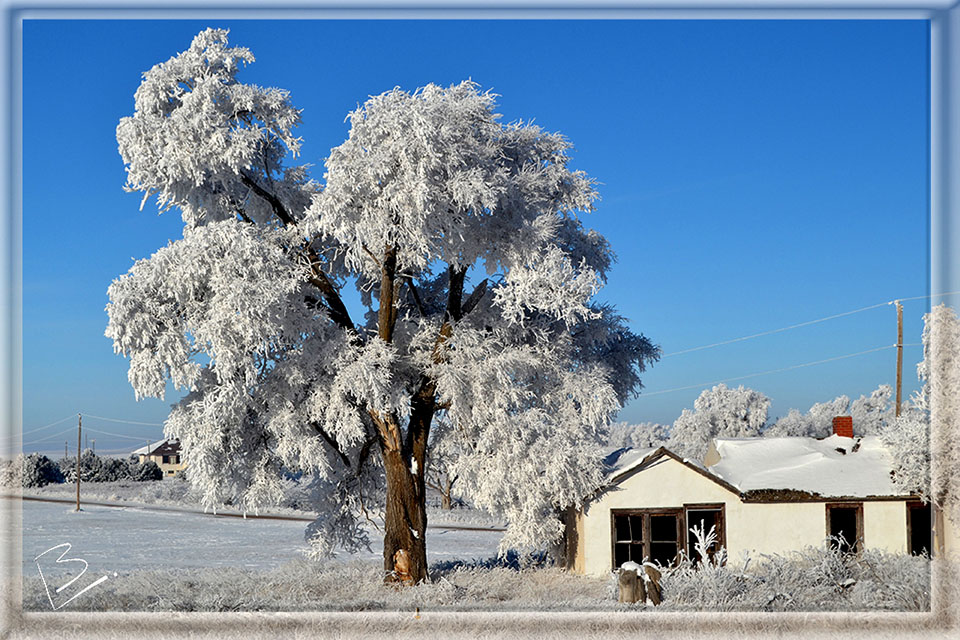 Winter Freeze Scenery in Alliance, Nebraska