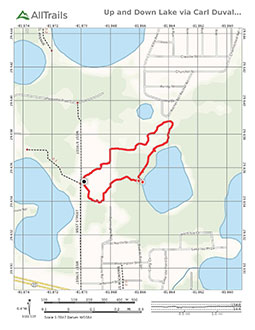 PDF Tail Map for Carl Duval Moore State Forest Trail at Up and Down Lake
