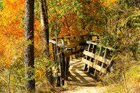 Rickety Walking Bridge