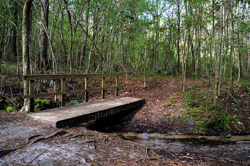 Walking bridge over creek