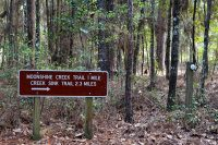 Sign pointing the way to the trailhead: Sink Creek Trail and Moonshine Creek Trail at San Felasco Hammock Preserve