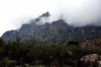 Fog on the Organ Mountains
