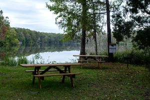Dunn's Creek State Park Picnic Area
