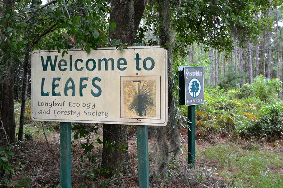 Longleaf Ecology and Forestry Society Sign