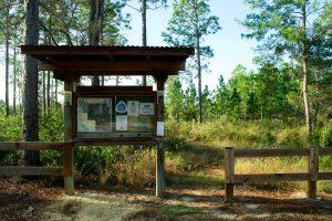 Longleaf Pine Trail Parking
