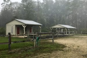 Parking Area at Etoniah Creek State Forest