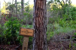 Susan Wright Trail Sign