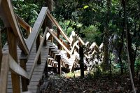 Outdoor Stairs in Forest
