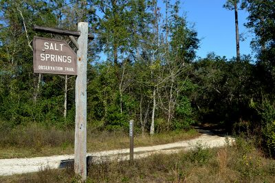 Salt Springs Observation Trail sign off Florida County Road 19