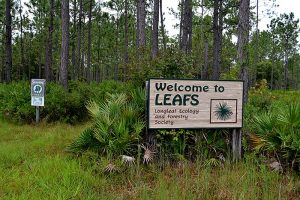 Entrance to LEAFS Stewardship Forest
