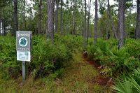 Trailhead at LEAFS Stewardship Forest
