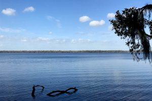 Little Lake George at Johns Landing